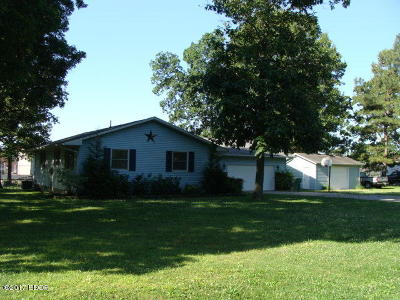 Johnston City Single Family Home For Sale: 303 Indian Drive