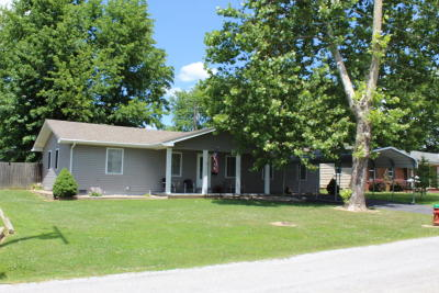 Johnston City Single Family Home For Sale: 900 W 10th Street