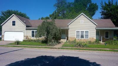 Johnston City Single Family Home For Sale: 804 Newton Street