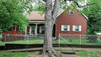 Single Family Home For Sale: 158 S Locust Street