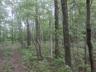 Hamilton County Residential Lots & Land For Sale: 100 E Road