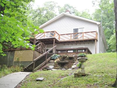 Goreville Single Family Home For Sale: 130 Remington Lane