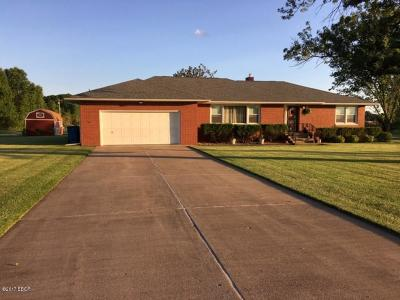Carterville Single Family Home For Sale: 1201 Shawnee Trail Road