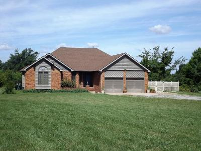 Johnston City Single Family Home For Sale: 16495 Route 37