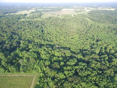 Jonesboro Residential Lots & Land For Sale: Xxx Ashlar