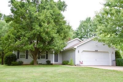 Murphysboro Single Family Home For Sale: 103 Amethyst Road
