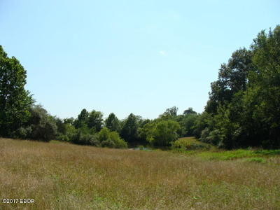 Carrier Mills Residential Lots & Land For Sale: 2085 Town Park Road