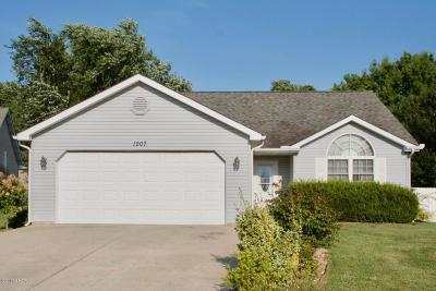 Carterville Single Family Home Active Contingent: 1207 Gerlock Court