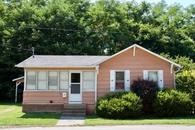 Murphysboro Single Family Home For Sale: 521 N 11th Street