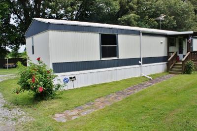 Massac County Single Family Home For Sale: 32 Eastland Drive