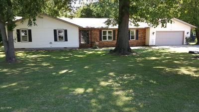 Carterville Single Family Home Active Contingent: 400 Victor Lane