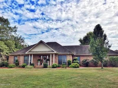 Metropolis Single Family Home For Sale: 2 Clark Lane