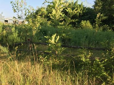 Carterville Residential Lots & Land For Sale: O Sycamore Road