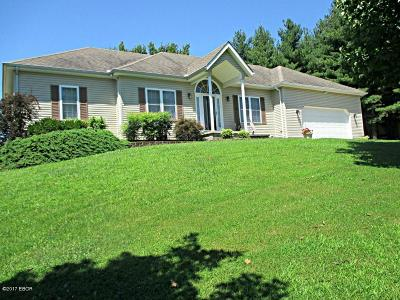 Goreville Single Family Home Active Contingent: 113 Kobbledy Knob Road