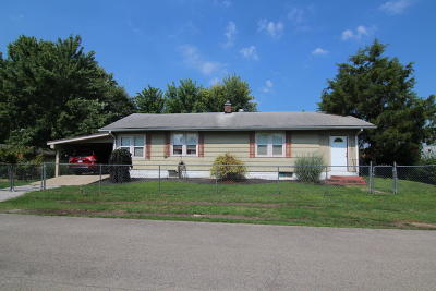 Murphysboro IL Single Family Home For Sale: $45,000