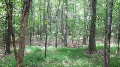 Massac County Residential Lots & Land For Sale: Country Club Rd