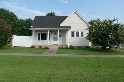 Massac County Single Family Home For Sale: 1023 Metropolis Street