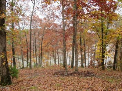 Goreville Residential Lots & Land For Sale: Bradford Point #Lot 298