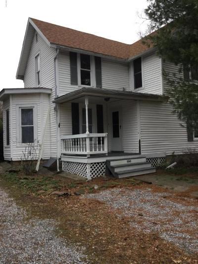 Cobden Single Family Home For Sale: 300 E Ash Street