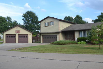 Carterville Single Family Home For Sale: 1001 Meadowlark Drive