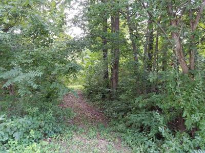 Jonesboro Residential Lots & Land For Sale: 6225 Old Cape Road