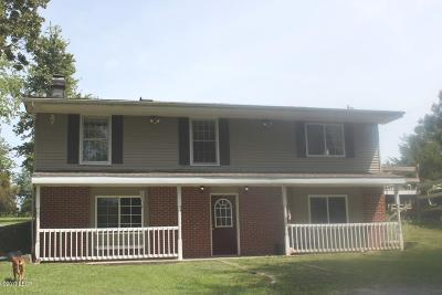 Vienna Single Family Home Active Contingent: 5705 State Route 147