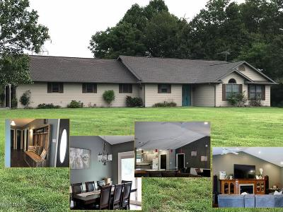 Murphysboro Single Family Home For Sale: 193 Spring Valley Dr