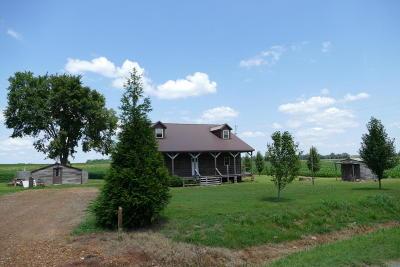Massac County Single Family Home For Sale: 4312 Jonesboro Road
