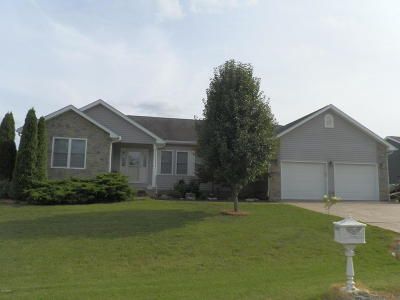 Carterville Single Family Home For Sale: 1105 Noelle