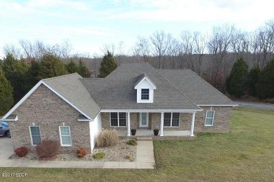 Goreville Single Family Home Active Contingent: 800 Luxor Landing Lane