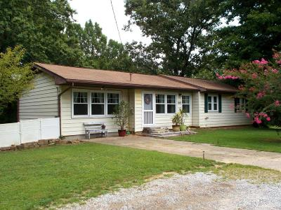 Murphysboro Single Family Home For Sale: 9805 Old Highway 13