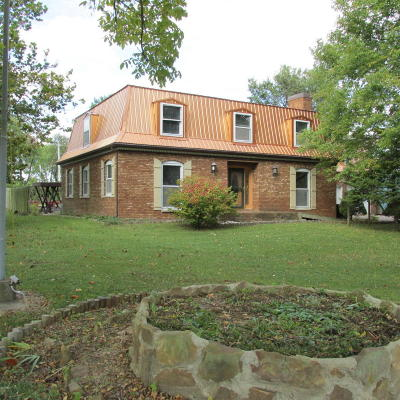 Carrier Mills Single Family Home For Sale: 490 Town Park Road