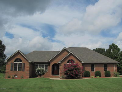 Carterville Single Family Home For Sale: 702 David Livingston Drive