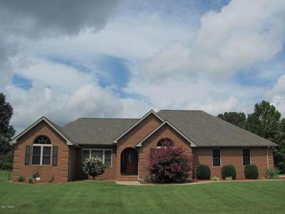 Carterville Single Family Home For Sale: 702 David Livingston Drive