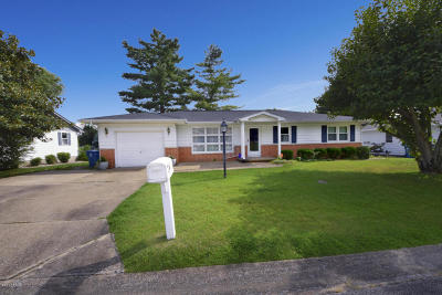 Carterville Single Family Home Active Contingent: 107 Lakeshore