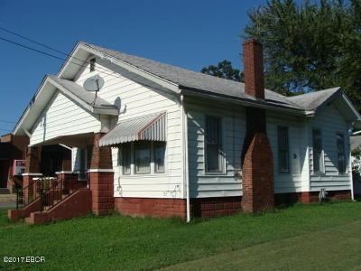 Johnston City Single Family Home For Sale: 1123 Washington Ave.