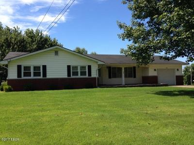 Goreville Single Family Home Active Contingent: 520 S Ferne Clyffe Road