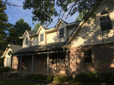 Carbondale Single Family Home For Sale: 346 Lake Indian Hills Drive