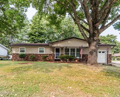 Marion Single Family Home For Sale: 206 Skyline
