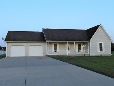 Herrin Single Family Home For Sale: 2302 Maria Drive