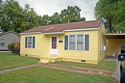 Massac County Single Family Home For Sale: 505 Brooklane