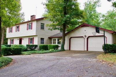 Carbondale Single Family Home For Sale: 58 Shawnee Hills Drive