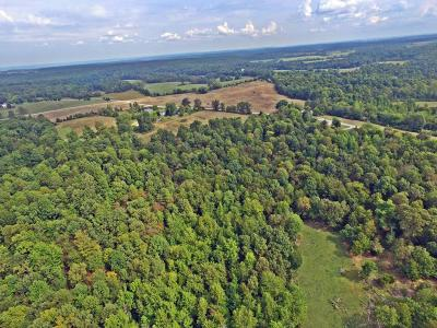 Massac County Residential Lots & Land Active Contingent: Midway Road