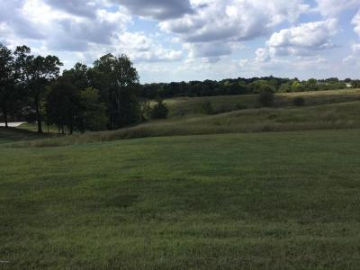 Anna Residential Lots & Land For Sale: 11 Hickory Lake Drive #11