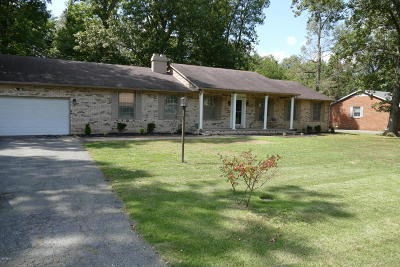 Metropolis Single Family Home For Sale: 9 White Oak Lane