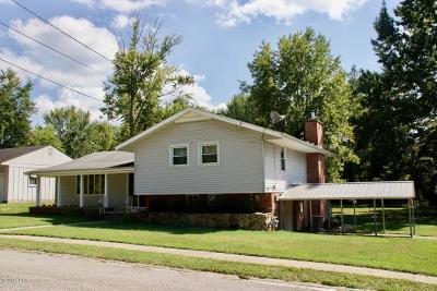Carbondale Single Family Home For Sale: 1409 W Walnut Street