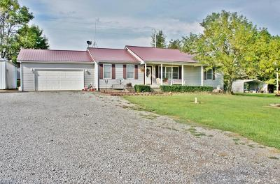 Massac County Single Family Home For Sale: 4251 Sielbeck Road