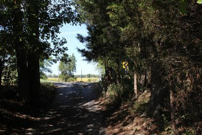 Murphysboro Residential Lots & Land For Sale: Kimmel Bridge Road