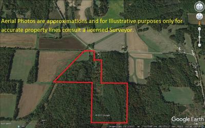 Williamson County Residential Lots & Land For Sale: 2963 Stonefort Road