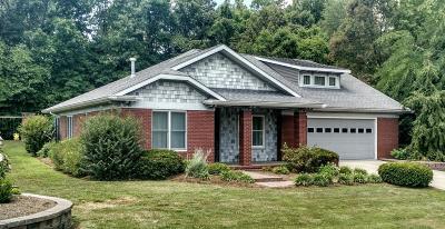 Murphysboro Single Family Home For Sale: 296 Majestic Oak Drive